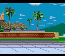 Background Hq Dragon Ball Z Super Butoden 3